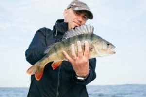 Best Reels for ultralight fishing